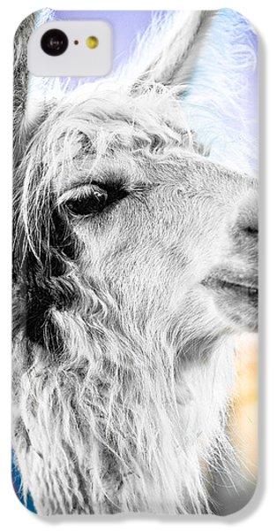 Dirtbag Llama IPhone 5c Case by TC Morgan