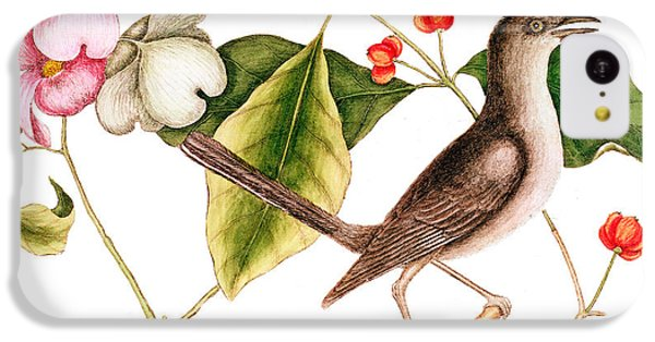 Dogwood  Cornus Florida, And Mocking Bird  IPhone 5c Case by Mark Catesby