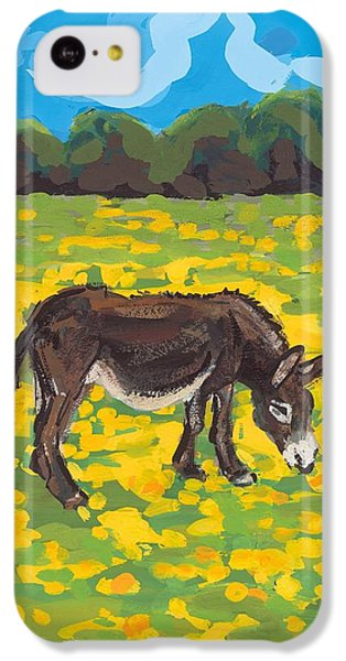 Donkey And Buttercup Field IPhone 5c Case by Sarah Gillard