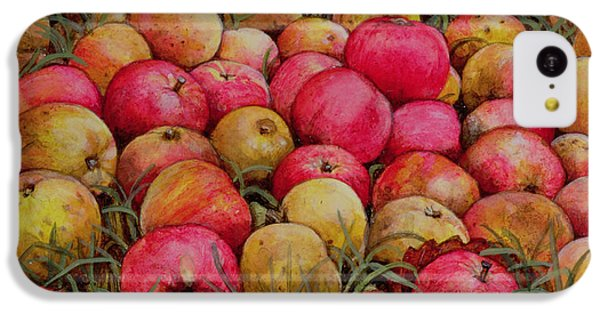 Durnitzhofer Apples IPhone 5c Case by Ditz