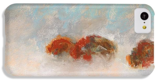 Early Morning Herd IPhone 5c Case by Frances Marino