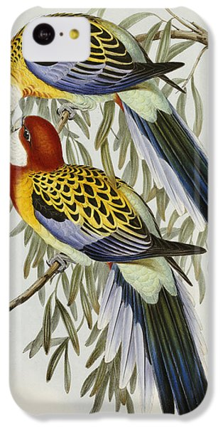 Eastern Rosella IPhone 5c Case by John Gould