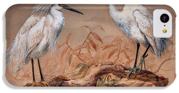 Egrets IPhone 5c Case