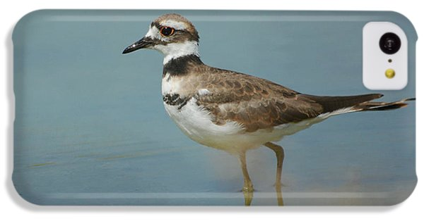 Killdeer iPhone 5c Case - Elegant Wader by Fraida Gutovich