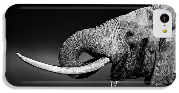 Bull iPhone 5c Case - Elephant Bull Drinking Water by Johan Swanepoel