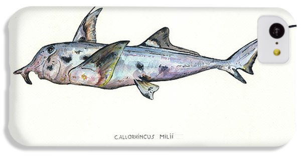Hammerhead Shark iPhone 5c Case - Elephant Shark by Juan Bosco