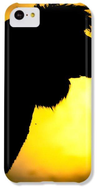 Endless Alpaca IPhone 5c Case by TC Morgan