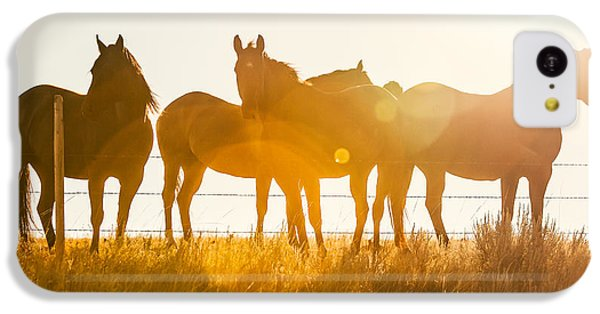 Horse iPhone 5c Case - Equine Glow by Todd Klassy