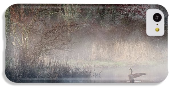IPhone 5c Case featuring the photograph Ethereal Goose by Bill Wakeley