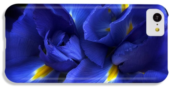 Evening Iris IPhone 5c Case