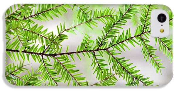 Evergreen Abstract IPhone 5c Case by Christina Rollo
