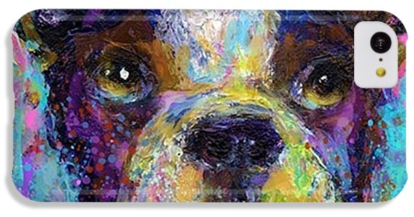Expressive Boston Terrier Painting By IPhone 5c Case
