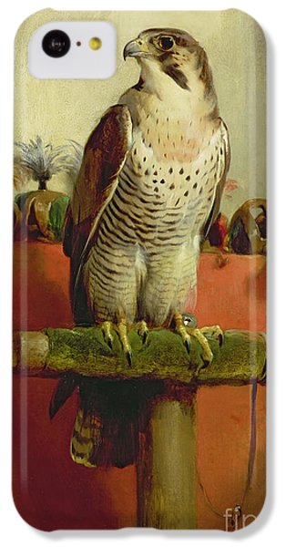 Falcon IPhone 5c Case by Sir Edwin Landseer