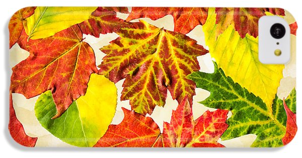 Fall Leaves Pattern IPhone 5c Case by Christina Rollo