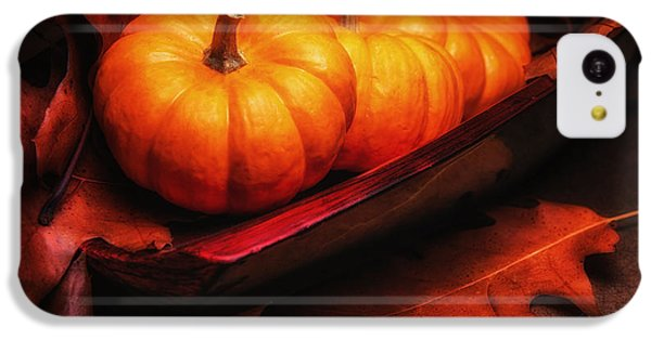 Fruit Bowl iPhone 5c Case - Fall Pumpkins Still Life by Tom Mc Nemar