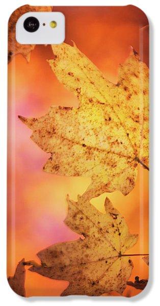 Fall Reveries IPhone 5c Case by Priya Saihgal