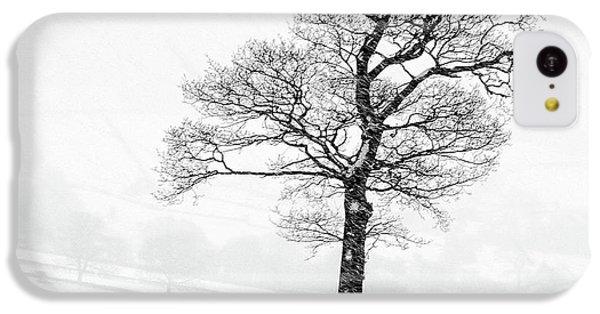 Sheep iPhone 5c Case - Farndale Winter by Janet Burdon