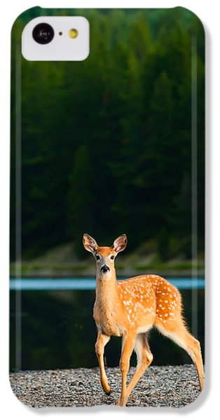 Fawn IPhone 5c Case by Sebastian Musial