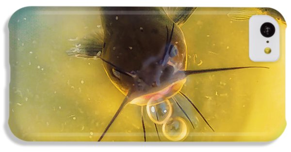 Catfish iPhone 5c Case - Fish In A Barrell by Susan Capuano
