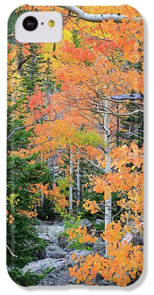 Flaming Forest IPhone 5c Case by David Chandler
