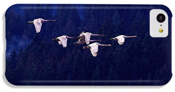 Swan iPhone 5c Case - Flight Of The Swans by Sharon Talson
