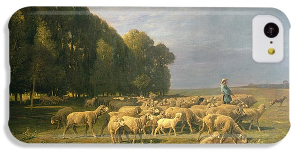 Flock Of Sheep In A Landscape IPhone 5c Case