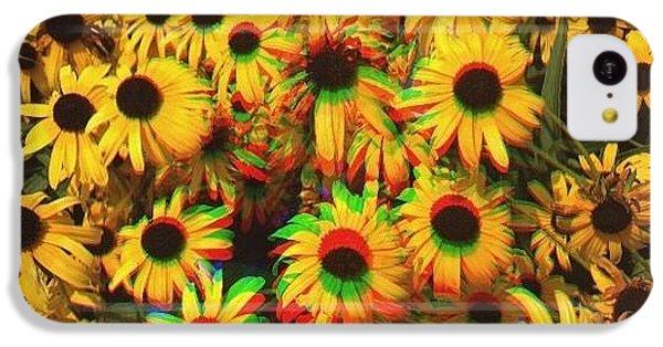 Flower Trip IPhone 5c Case