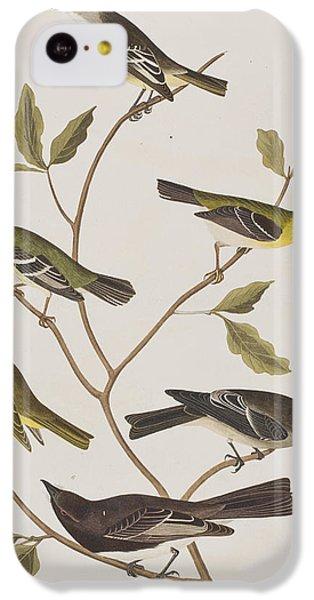 Flycatcher iPhone 5c Case - Fly Catchers by John James Audubon