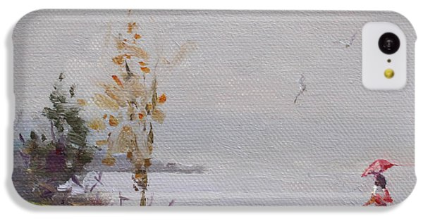 Seagull iPhone 5c Case - Fog And Rain At Gratwick Waterfront Park by Ylli Haruni