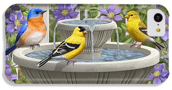 Fountain Festivities - Birds And Birdbath Painting IPhone 5c Case by Crista Forest