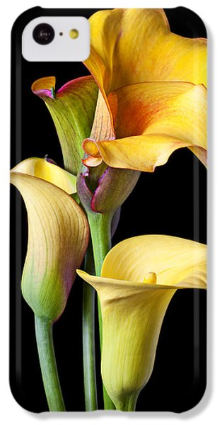 Lily iPhone 5c Case - Four Calla Lilies by Garry Gay