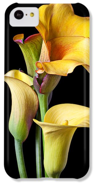 Four Calla Lilies IPhone 5c Case by Garry Gay