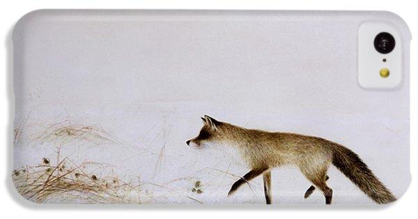 Fox In Snow IPhone 5c Case