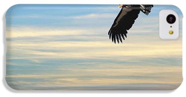 Free To Fly Again - California Condor IPhone 5c Case