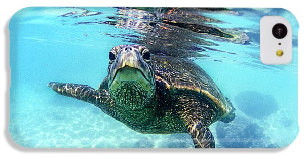 friendly Hawaiian sea turtle  IPhone 5c Case by Sean Davey