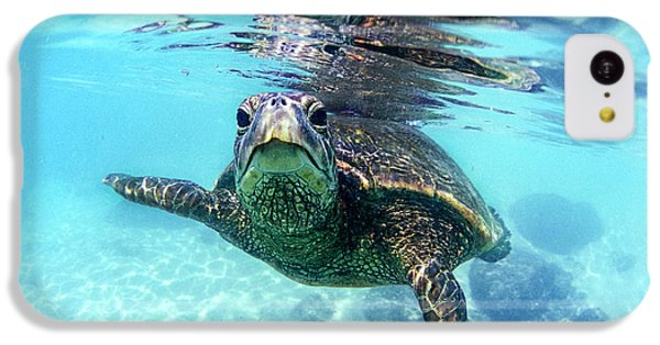 friendly Hawaiian sea turtle  IPhone 5c Case by Sean Davey