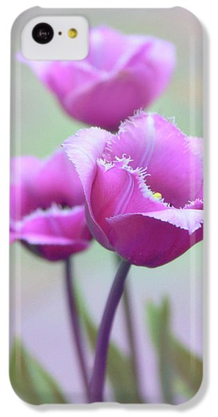 IPhone 5c Case featuring the photograph Fringe Tulips by Jessica Jenney
