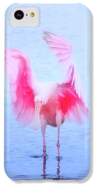 From The Heavens IPhone 5c Case by Mark Andrew Thomas