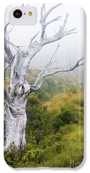 IPhone 5c Case featuring the photograph Ghost by Werner Padarin