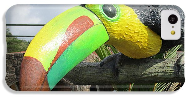 Giant Toucan IPhone 5c Case by Randall Weidner