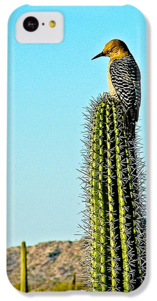 Gila Woodpecker On Saguaro In Organ Pipe Cactus National Monument-arizona IPhone 5c Case by Ruth Hager