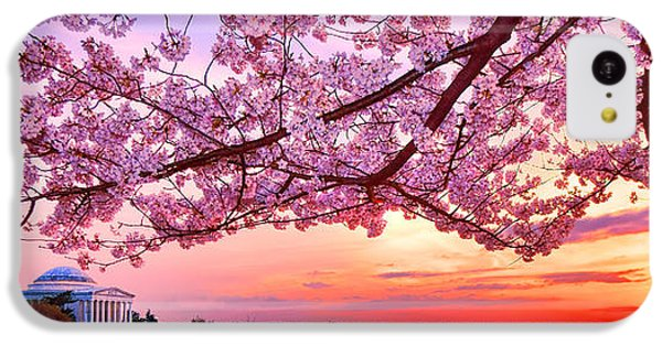 Glorious Sunset Over Cherry Tree At The Jefferson Memorial  IPhone 5c Case by Olivier Le Queinec