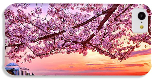 Jefferson Memorial iPhone 5c Case - Glorious Sunset Over Cherry Tree At The Jefferson Memorial  by Olivier Le Queinec
