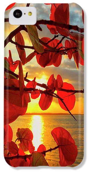 Beach Sunset iPhone 5c Case - Glowing Red by Stephen Anderson