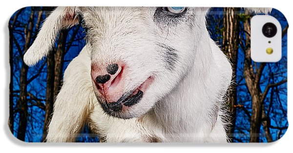 Goat High Fashion Runway IPhone 5c Case by TC Morgan