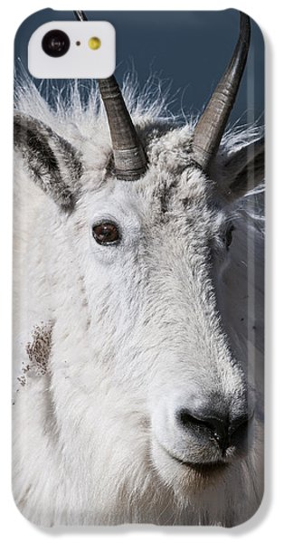 Goat Portrait IPhone 5c Case