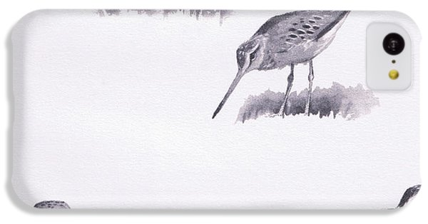 Godwits And Green Sandpipers IPhone 5c Case