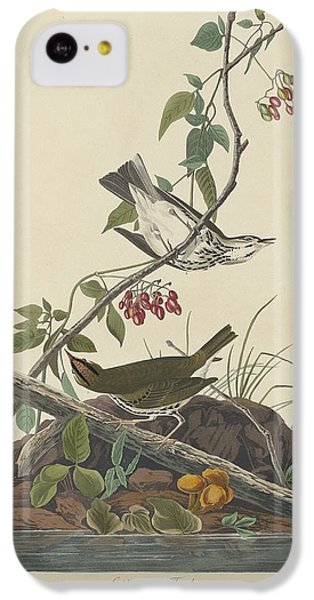 Golden-crowned Thrush IPhone 5c Case