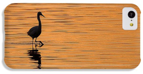 Golden Egret IPhone 5c Case