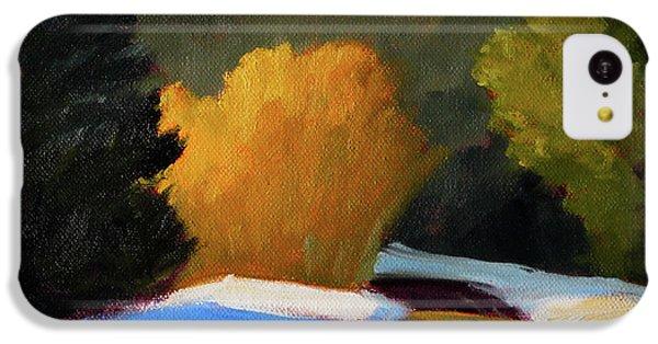Golden Light Winter Road IPhone 5c Case by Nancy Merkle